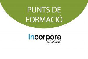 PUNT DE FORMACIO